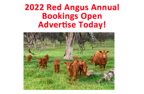 2022 Annual Bookings copy